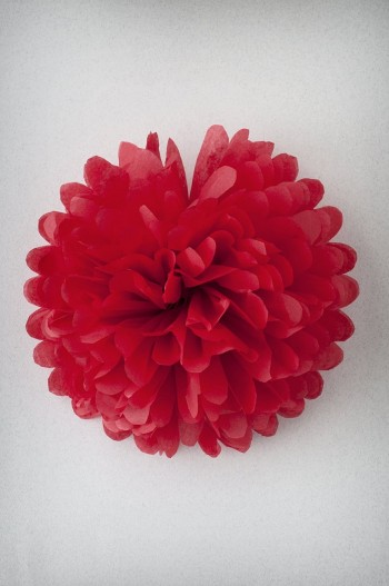 Papel de seda - Rouge