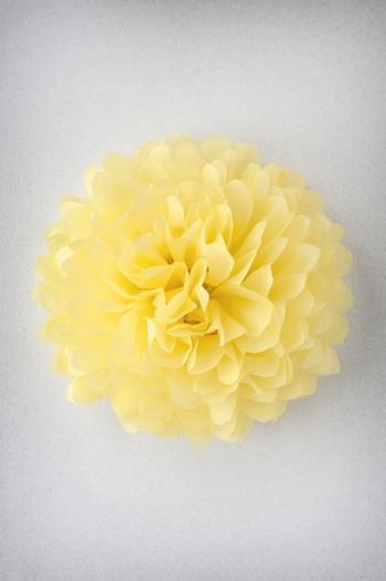 Papel de seda - Jaune Citron