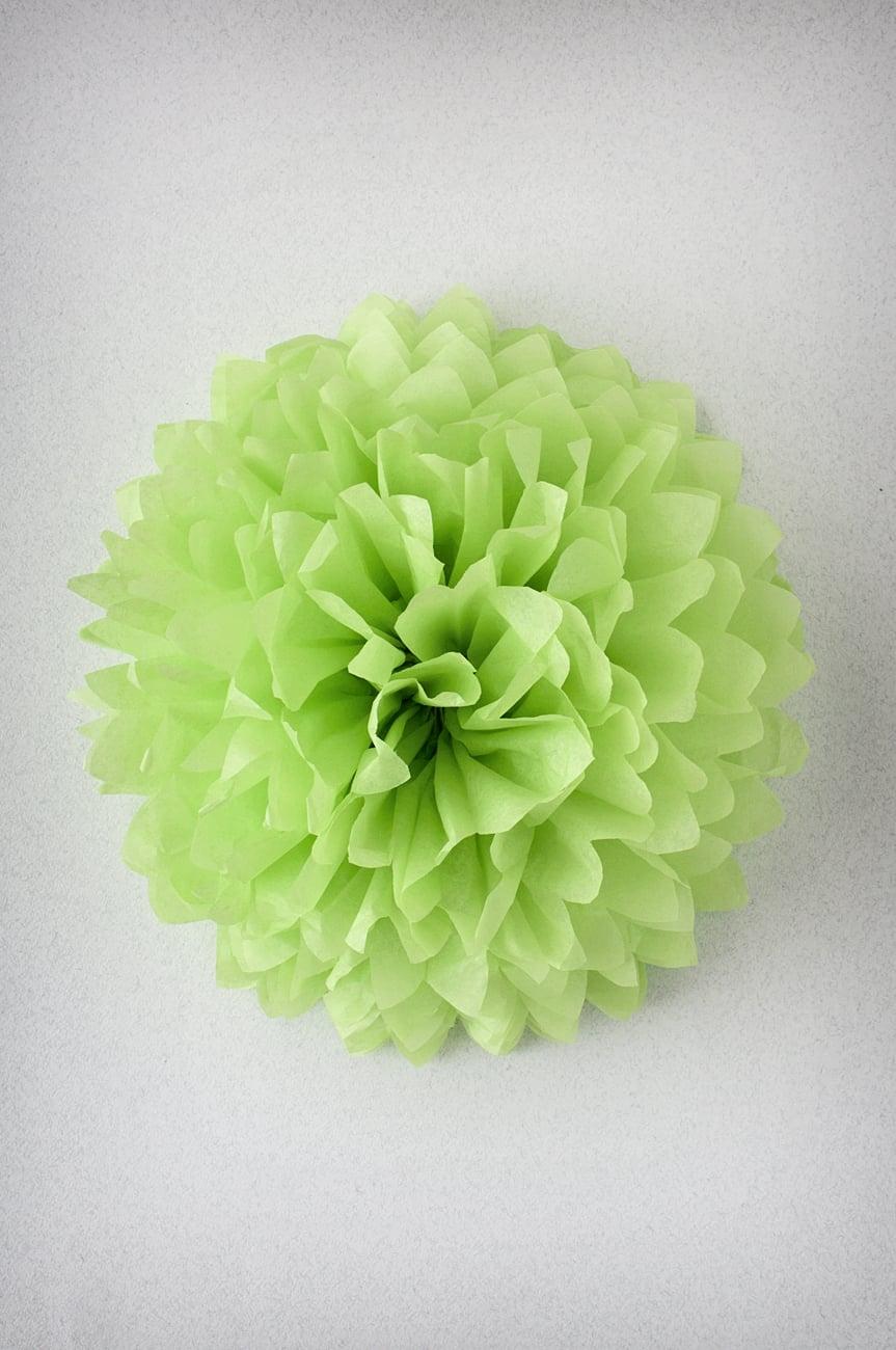 Pompon Vert pomme