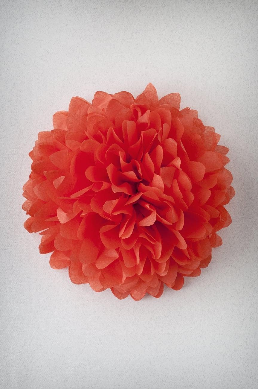 Pompon Orange