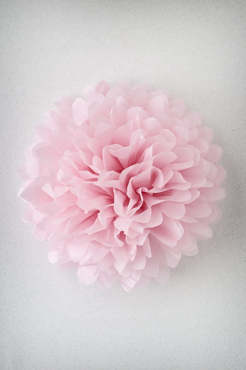 Pompon Rose Pale
