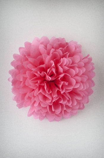 Pompon Rose Saumon